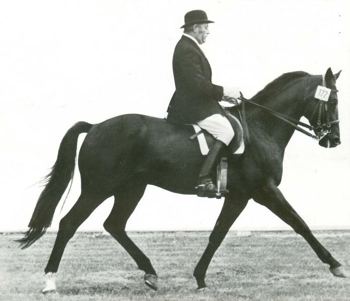 Waldemar Ress